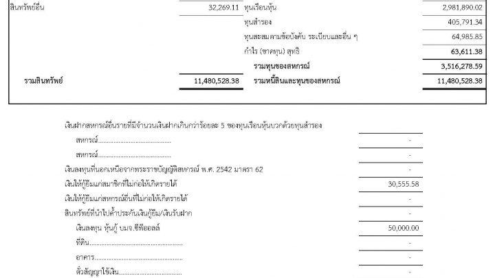 รายการย่อแสดงสินทรัพย์และหนี้สิน ณ วันที่ 31 มกราคม 2562